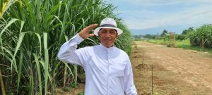 HM Arum Sabil, tokoh pertanian Jember