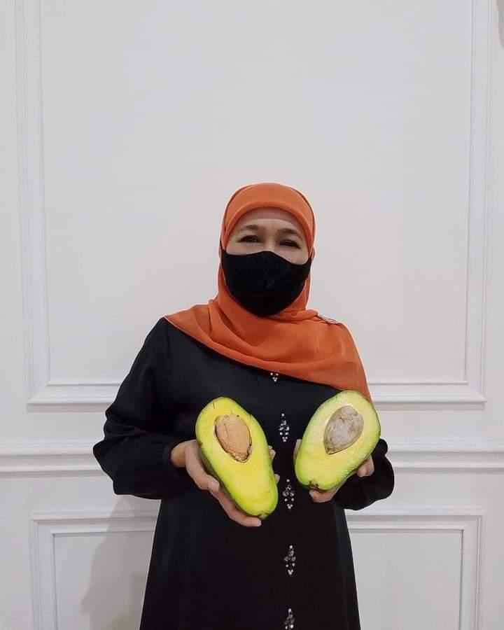 Foto: Gubernur Jatim, menunjukkan buah Alpukat Pameling. (Foto: Istimewa)