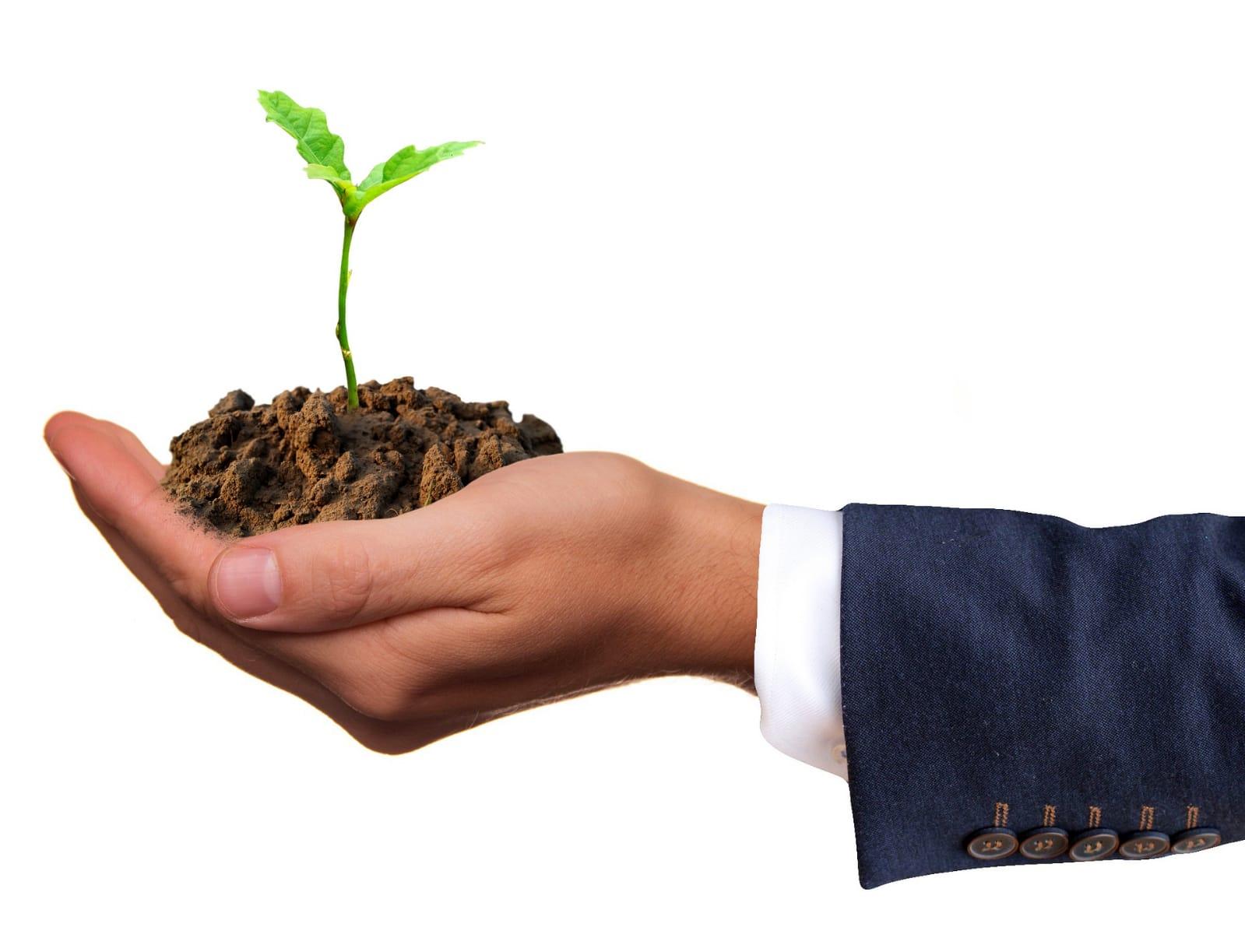 Ilustrasi memulai bisnis pertanian (SarahRichterArt/Pixabay)