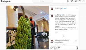 Postingan tentang pisang hijau oleh Gubernur Jatim, Khofifah Indar Parawansa, direspon positif oleh warganet. (Sumber foto: Akun IG Khofifah)